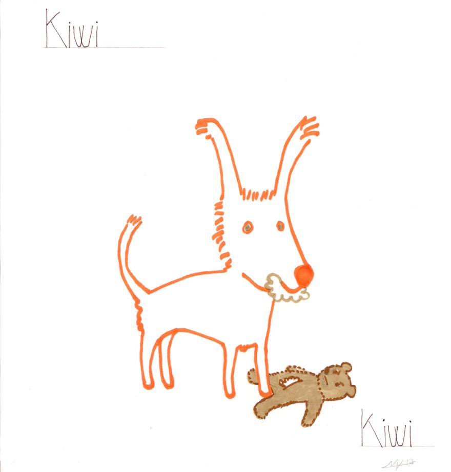 11_ABC-kiwi_sm